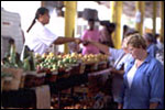 Dallas Farmers Market image