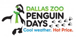 Penguin Days at the Dallas Zoo