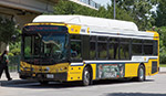 Image of DART bus